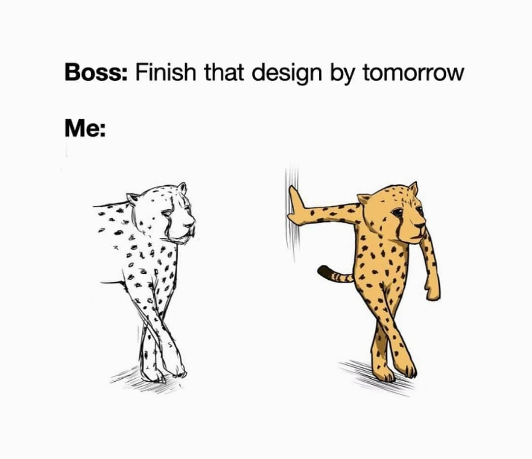 design meme, joke and humor