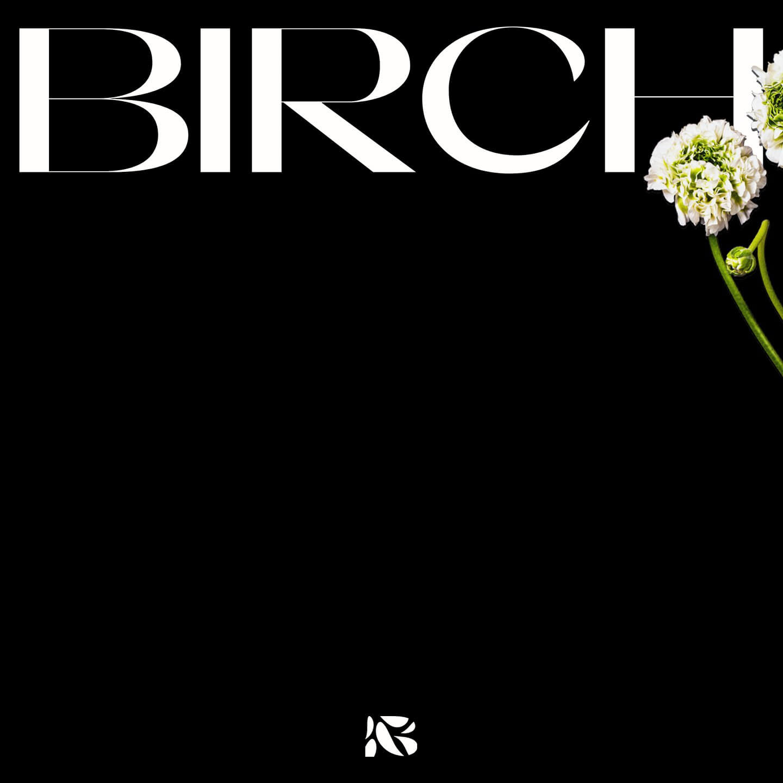 Birch Event Design Branding, New York, NY